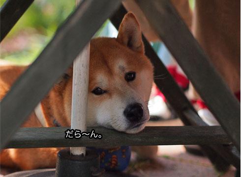18日ブログ10.jpg