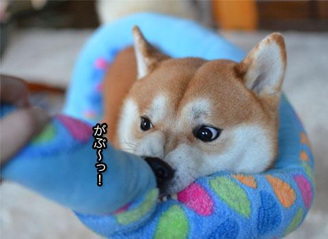 5日ブログ2.jpg