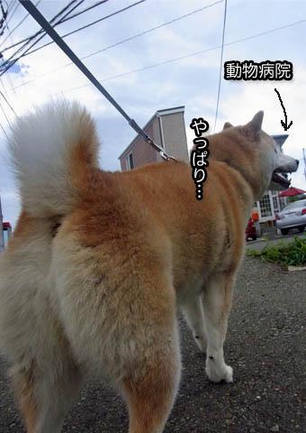 14日ブログ11.jpg